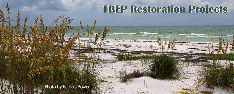 TBEP Restoration Projects