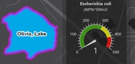 Water Quality Dashboards